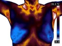 infraroodfoto borsten